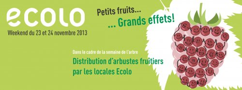 Petits fruitiers : Grands effets !