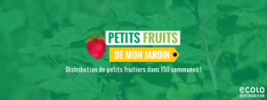 Distribution d'arbustes fruitiers, c'est reparti !
